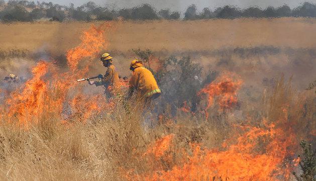 Varios bomberos combaten el fuego en los alrededores de Melbourne.