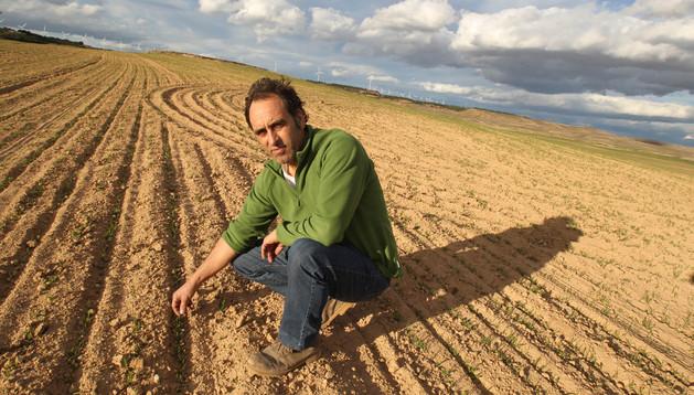 Víctor Martínez Iriarte, en una parcela donde los conejos se han comido parte de lo sembrado