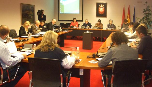 La platilla del CRANA compareció este miércoles ante la comisión de Desarrollo Rural, Medio Ambiente y Administración Local.