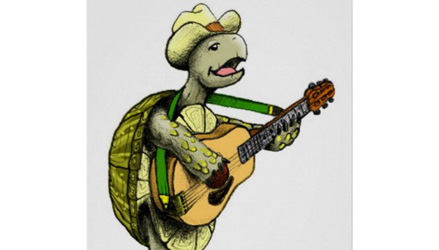 'Historias de tortugas' en Civican