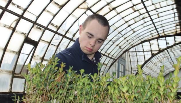El joven Iker San Miguel, con síndrome de Down, estudió jardinería