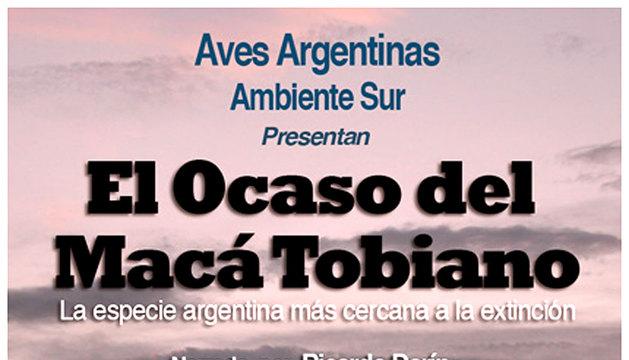 Cartel anunciador del documental 'El ocaso del macá tobiano'