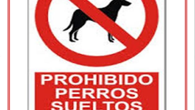 Carteles de aviso colocados en Cintruénigo informando de las sanciones