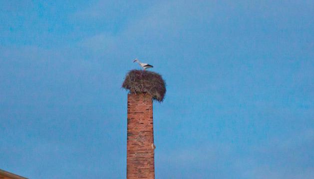 El nido, ligeramente ladeado y con una cigüeña, en la chimenea