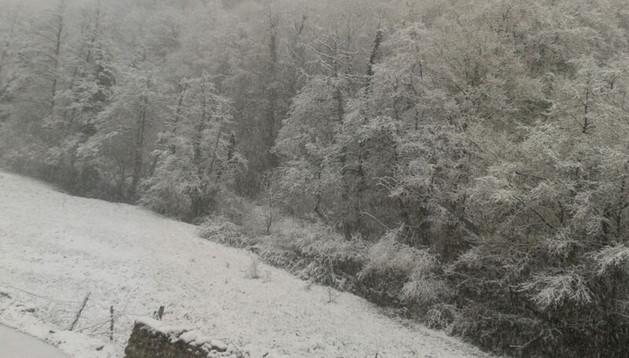 Lantz ha amanecido el domingo bajo un manto blanco