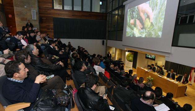 Imagen de la presentación de las XX Jornadas de Exaltación de la Verdura de Tudela
