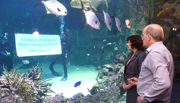 Protestas acuáticas por los daños en la Gran Barrera de Coral
