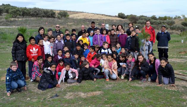 Alumnos de 3º y 5º cursos de Primaria realizaron el tercer turno de plantaciones de pinos en la superficie situada en el término de La Canilla, en el camino de Santa Cruz
