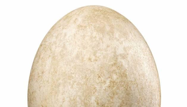 El ejemplar de huevo de ave elefante, de Madagascar, cien veces más grande que un huevo gallina