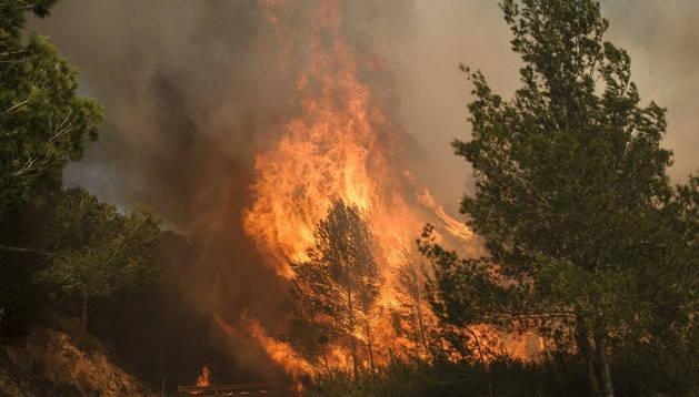 Incendio declarado en la zona de Es Cubells, en el municipio ibicenco de Sant Josep de sa Talaia.