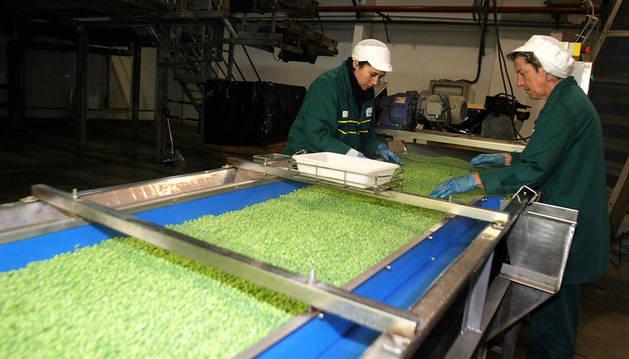 La industria agroalimentaria es una de las afectadas por los recortes a la cogeneración