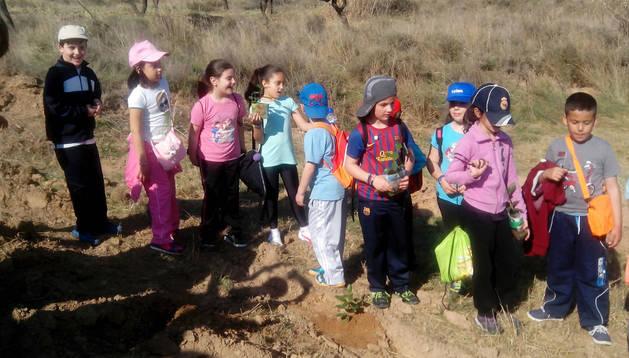 Niños participantes en el Día del árbol del colegio corellano. Cedida