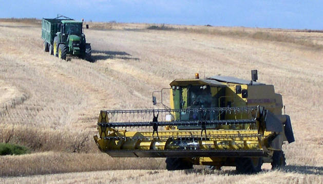 Un tractor y una cosechadora, en un campo de cereal.