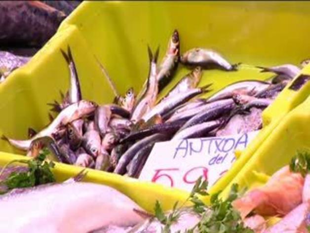 Alerta por la presencia de anisakis en las anchoas del Cantábrico