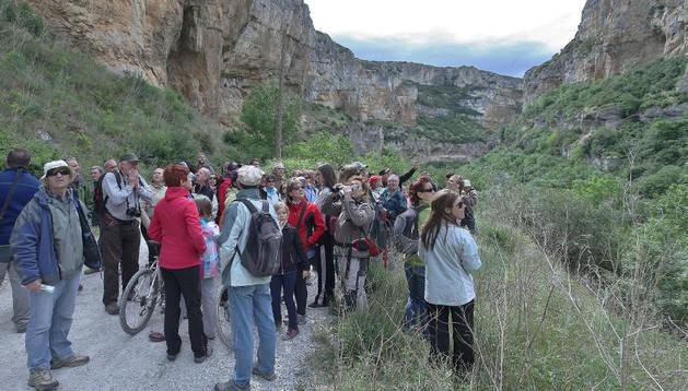 Un grupo de visitantes contempla el paisaje de la foz de Lumbier mientras escucha las explicaciones de los geólogos