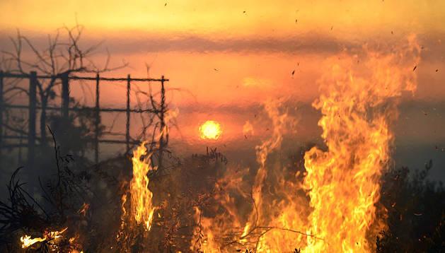 Incendio registrado en San Marcos, condado de San Diego, California (Estados Unidos)