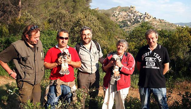 Suelta de dos pollos de águila azor perdicera o águila Bonelli en Gallipienzo en 2012