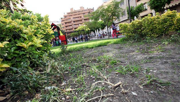 Tudela pide civismo ante el robo y destrozo de plantas en for Los jardines esquelas