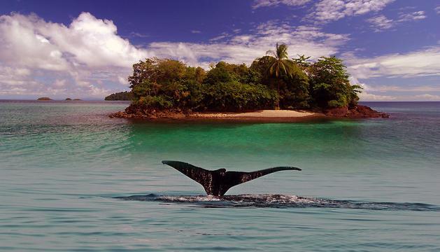 Isla del Parque Nacional de Coiba, en el Océano Pacífico, en Panamá