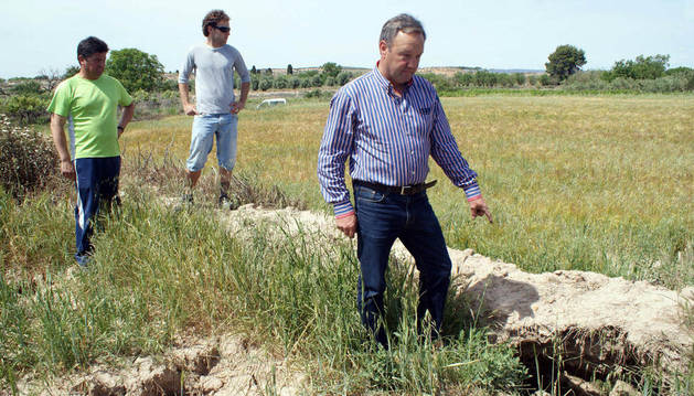 De izda. a dcha., Jesús Sola, Alberto Alfaro y José Luis Jiménez, mostrando un agujero hecho por conejos.