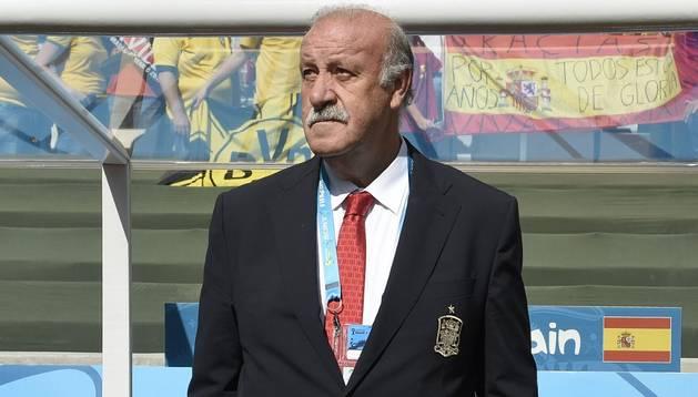 Vicente Del Bosque, en el partido contra Australia