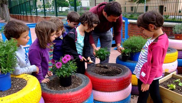 Un grupo de alumnos en el huerto escolar