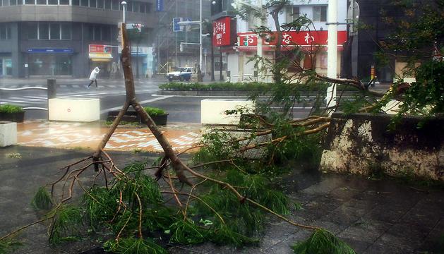 Árboles caídos en una ciudad de la isla japonesa de Okinawa.