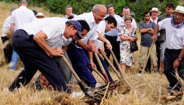 Día del Mundo Rural en Miranda de Arga de 2013