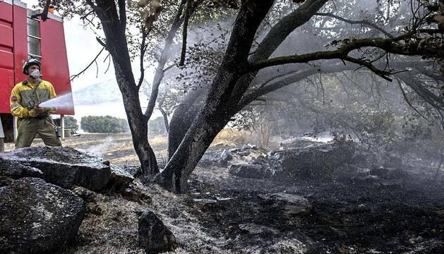 El viernes 18 de julio una zona próxima a Ujué conocida como Alto de Bigas sufrió un incendio forestal.