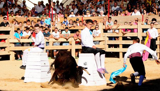 Francisco Murillo Peña, Paquito, emprende una carrera seguida por la vaca, mientras Pedro De la Peña Herranz y Eduardo Perdes Montenegro observan con gesto de tensión los movimientos del animal.