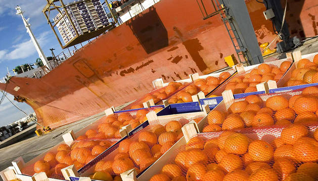 Cítricos de la empresa valenciana Torres&Schuback con destino al mercado ruso