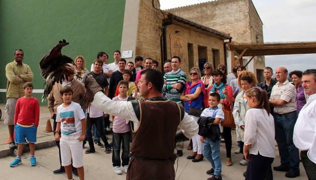 Imagen de una exhibición de cetrería en el Día de Bardenas celebrado el pasado año en Cadreita.