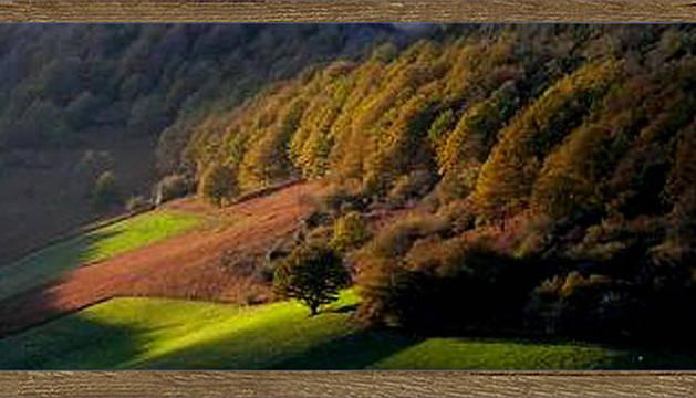 Vista del valle de Arce