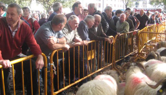 Un grupo de personas contempla el ganado ovino de uno de los rediles improvisados en la feria.