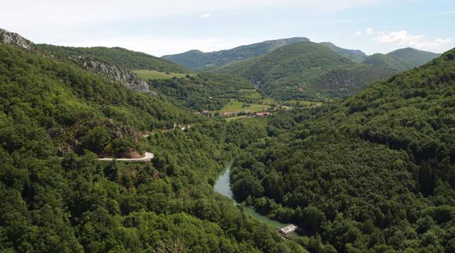 Masas boscosas en Aezkoa desde el mirador de Ariztokia sobre el Irati.