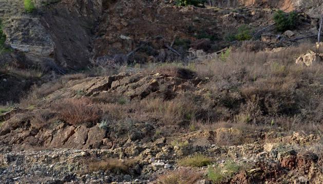 Aspecto de la ladera hundida sobre el Ega en Cárcar.
