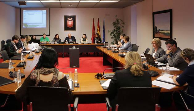 Los representantes del colegio de Castejón, al fondo, durante su comparecencia en el Parlamento.