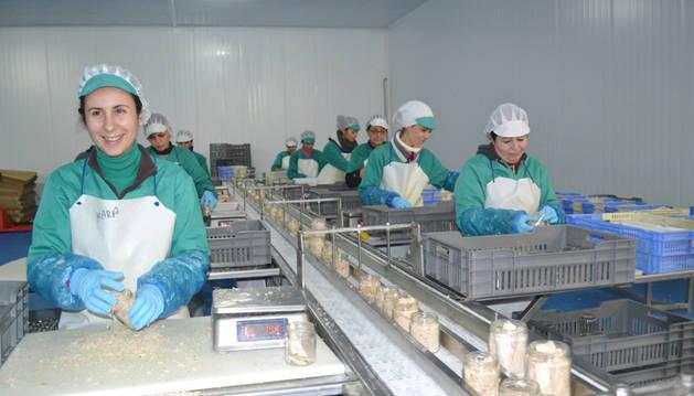 Nueve de las trabajadoras de la línea de embotado de bonito en la fábrica agroalimentaria MCA Spain de Mendavia.