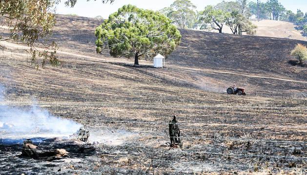 Campos arrasados por el fuego en el sur de Australia.