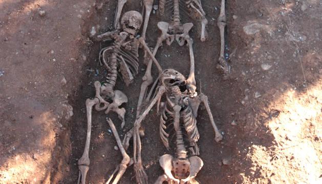 Imagen de la excavación.