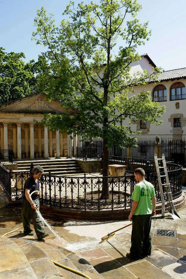 El árbol de Gernika se ha secado y será sustituido en febrero