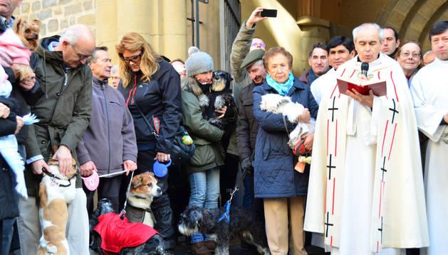 Bendición de animales en San Nicolás y en San Miguel