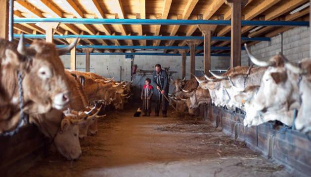 Explotacion de ganadería ecológica.