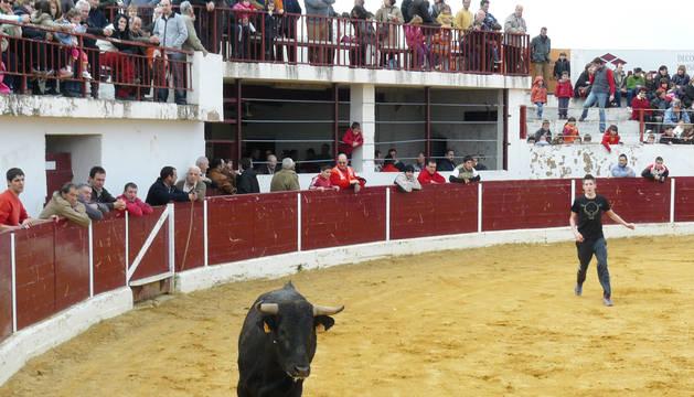 Capea en Mendavia para abrir la temporada taurin