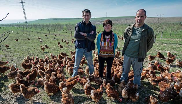 Una sociedad de avicultura alternativa lanza una marca de huevos navarros