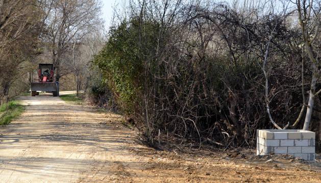 Término del Cerrado, donde más dañada resultó la mota