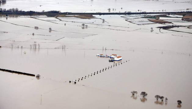 Imagen aérea de campos de cultivo en los alrededores del río Ebro a su paso por el medidor de Castejón.