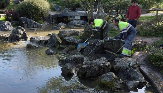 Dos operarios limpian las algas que se forman en los sumideros.