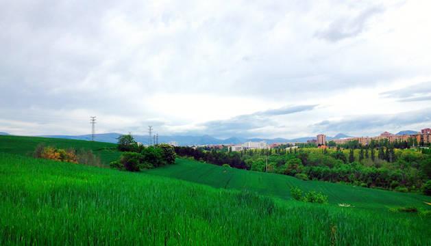 Campos alrededor del sur de Pamplona.