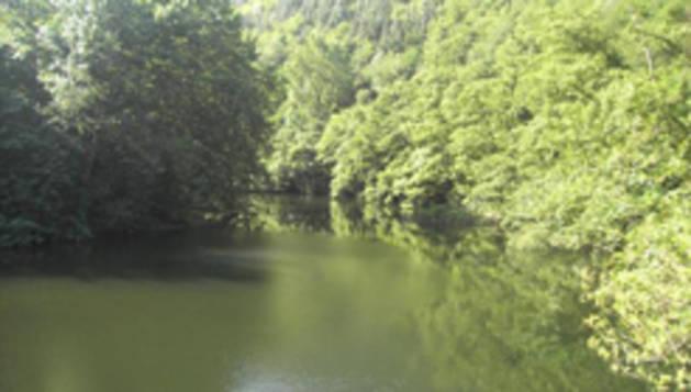 La protección de los ecosistemas transfronterizos es uno de los ámbitos de actuación.